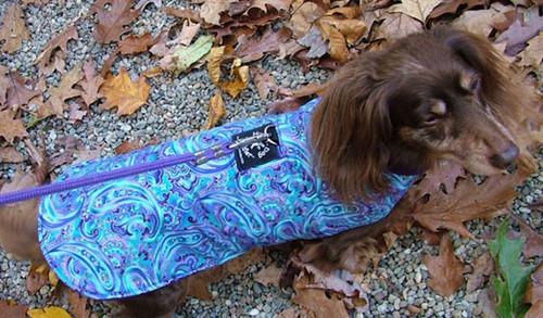 Designer Fleece Dog Coat