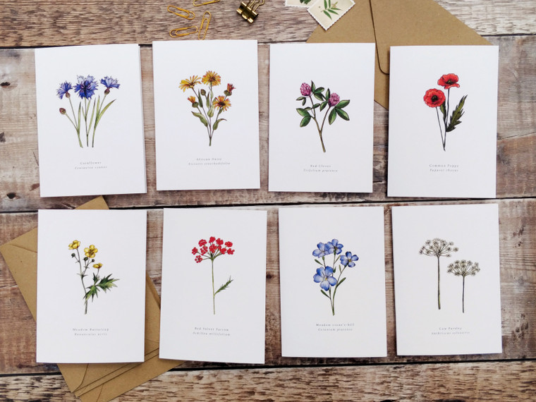 Set of 8 Wildflower Folded Notecards & Envelopes