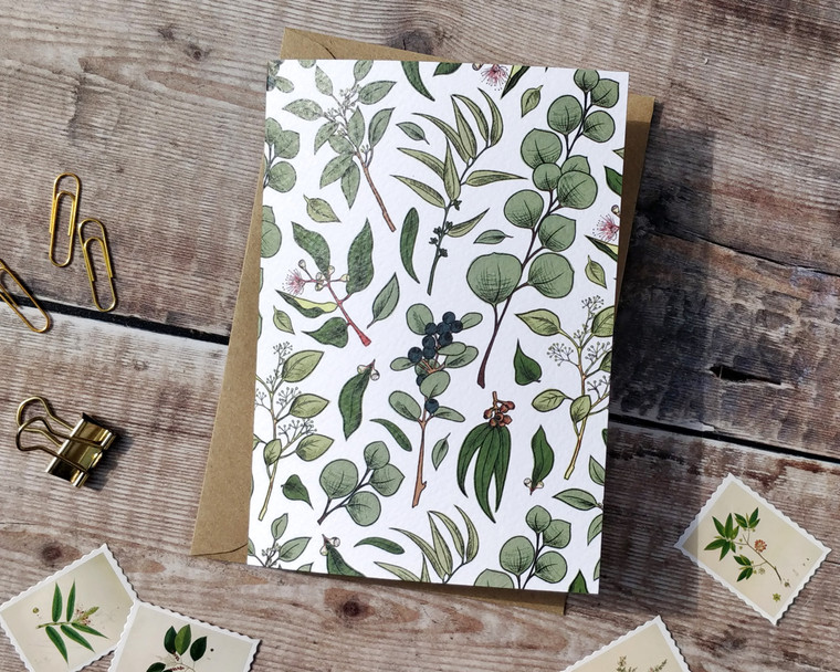 Eucalyptus Folded Notecards & Envelopes