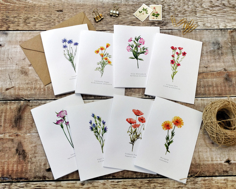 Set of 8 Wildflower Watercolour Folded Notecards & Envelopes