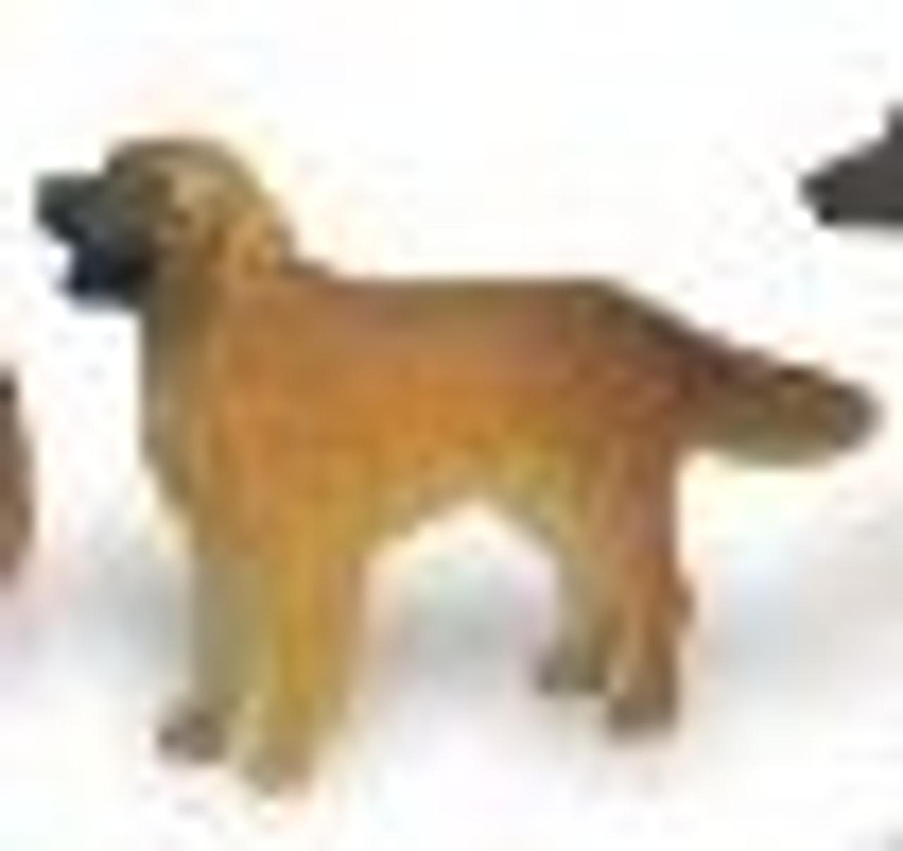 Golden Retriever-Adult