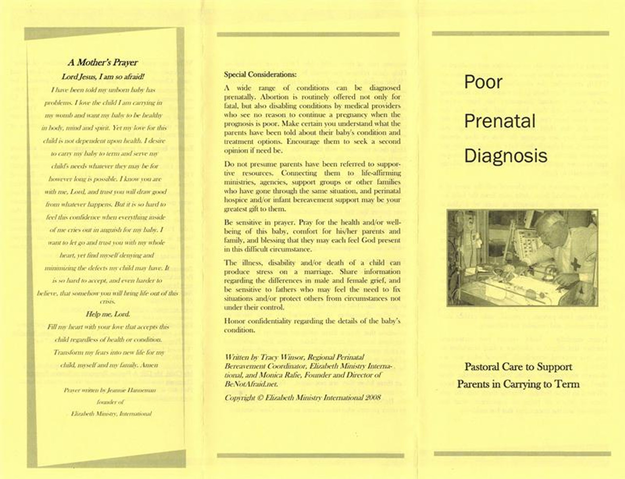 Poor Prenatal Diagnosis Flyer