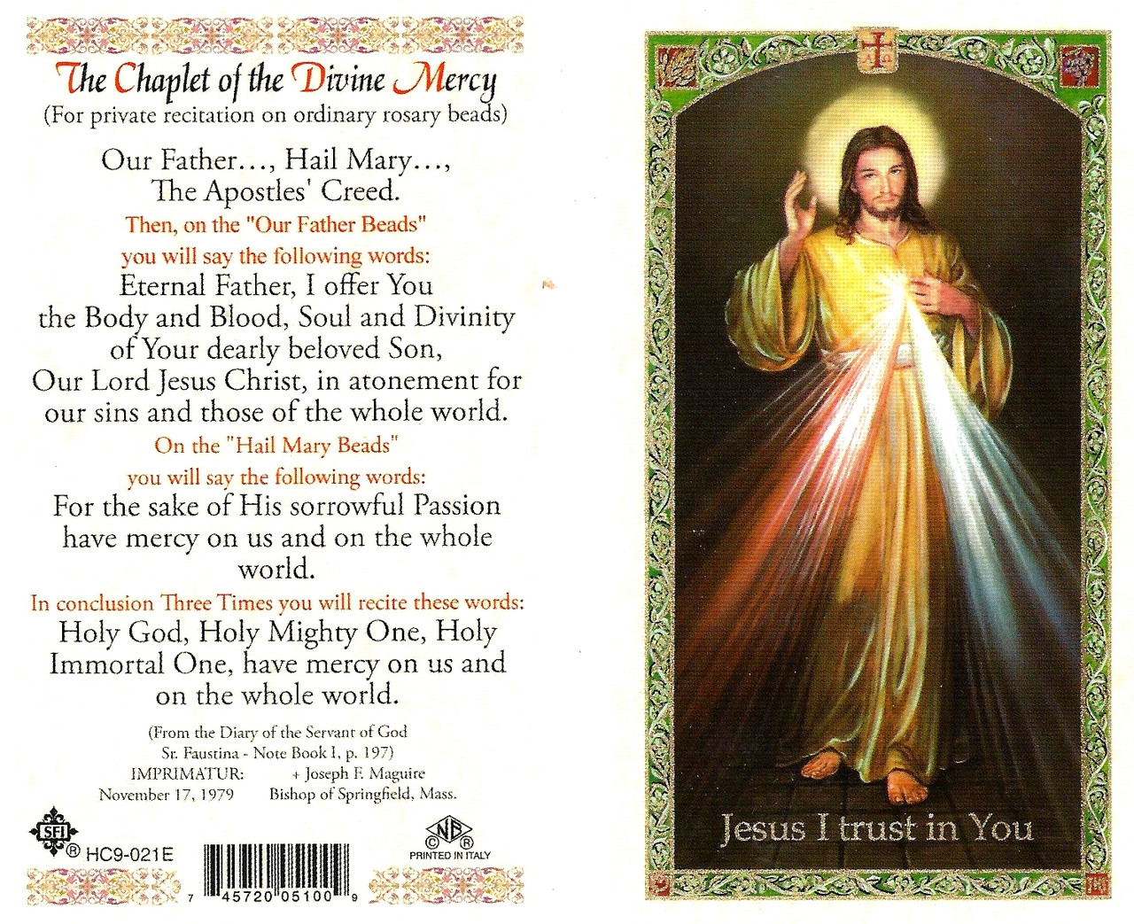 photo relating to Divine Mercy Chaplet Printable named The Chaplet of the Divine Mercy,Laminated prayer card