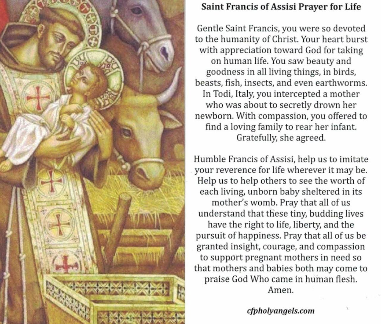 Saint Francis of Assisi Prayer for Life Prayer CArd