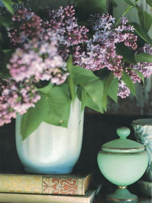 Hyacinth flower card