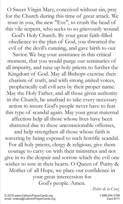 Prayer to Blessed Mother Mary to intercede to purge evil from the Church