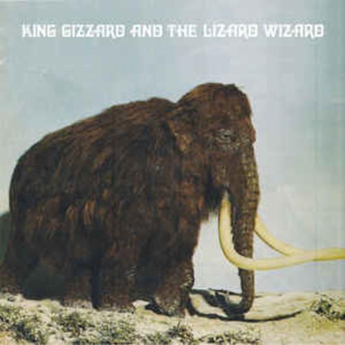 King Gizzard and the Lizard Wizard - Polygodwanaland Fuzz Club Version (VINYL LP)