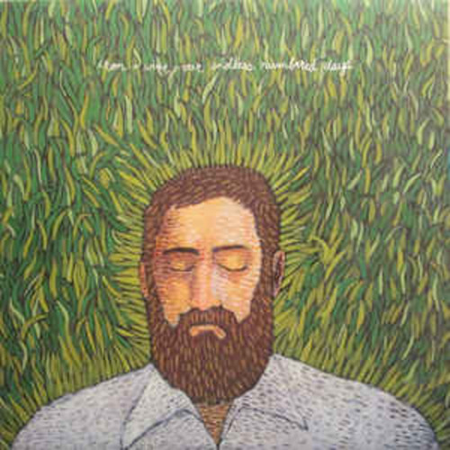 Iron and Wine - Our Endless Numbered Days (VINYL LP)