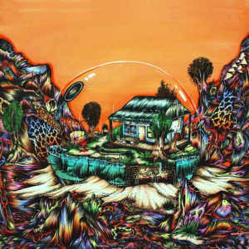 Koi Child - Koi Child (VINYL LP)