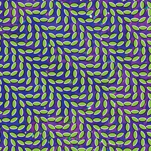 Animal Collective - Merryweather (LP)