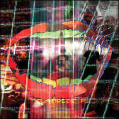 Animal Collective - Centipede (LP)