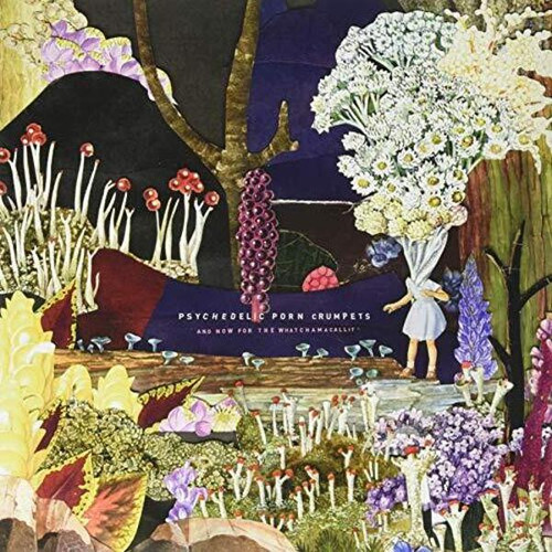 Psychedelic Porn Crumpets - And Now For The Watchamacallit (VINYL LP)