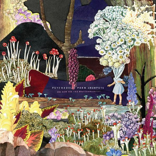 Psychedelic Porn Crumpets - And Now For The Watchamacallit EU (VINYL LP)