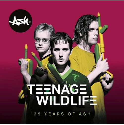 Ash – Teenage Wildlife: 25 Years Of Ash