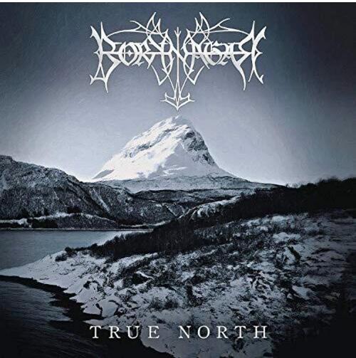 Borknagar – True North.   (2 × Vinyl, LP, Album)