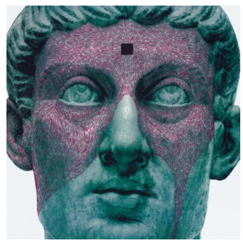 Protomartyr  ‎– The Agent Intellect.    (Vinyl, LP, Album)