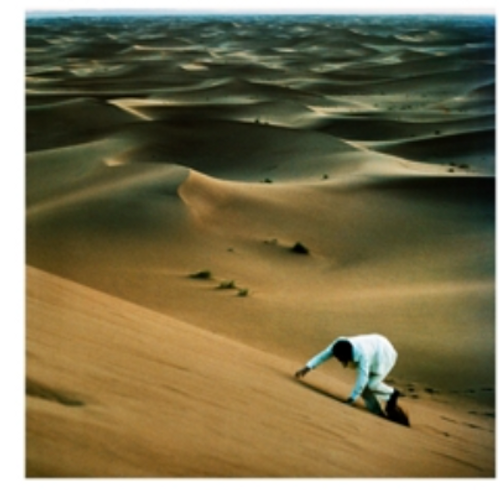 Baxter Dury – Prince Of Tears.   ( Vinyl, LP, Album)