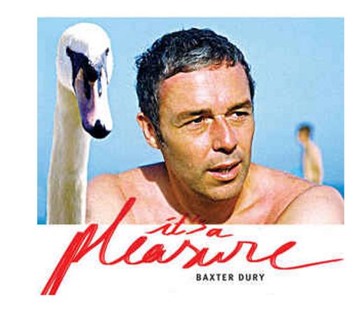 Baxter Dury – It's A Pleasure    (Vinyl, LP, Album)