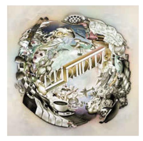Bag Raiders – Bag Raiders.   ( Vinyl, LP, Album)