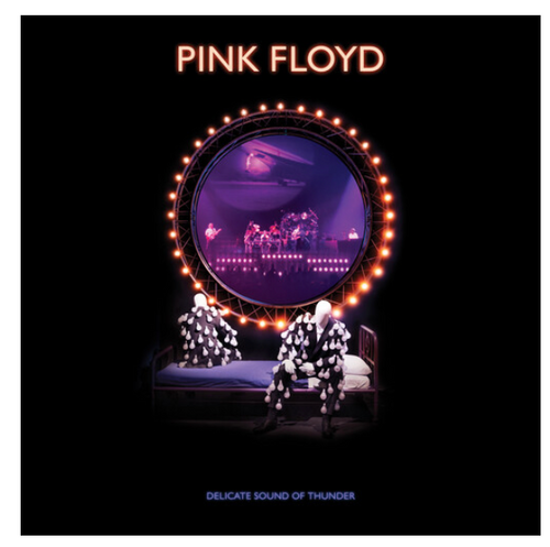 Pink Floyd ‎– Delicate Sound Of Thunder.   (3 × Vinyl, LP, Album, Reissue, Remixed, 180g)Pink Floyd ‎– Delicate Sound Of Thunder.   (3 × Vinyl, LP, Album, Reissue, Remixed, 180g)