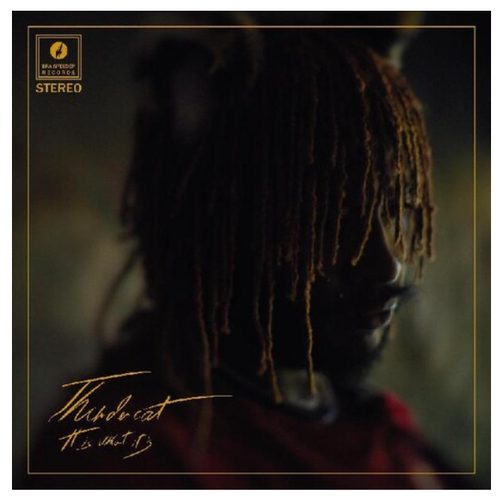 Thundercat – It Is What It Is.   (Vinyl, LP, Album, Limited Edition, Stereo, Cream)