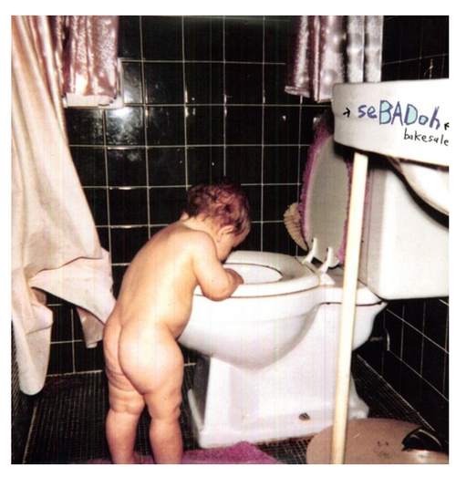 Sebadoh – Bakesale.   ( Vinyl, LP, Album)