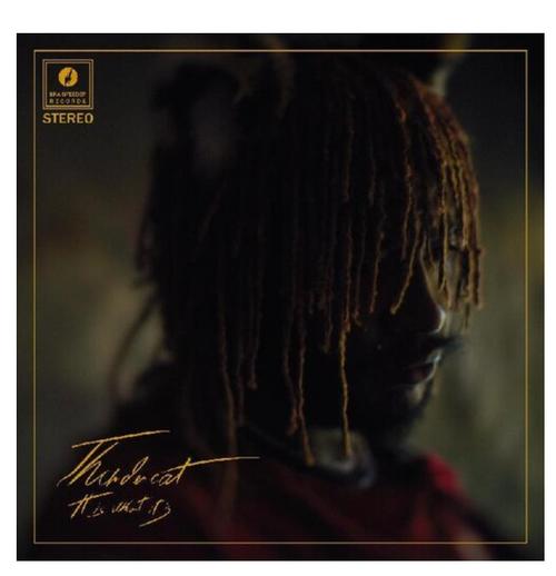 Thundercat – It Is What It Is   (Vinyl, LP, Album, Stereo, Red)