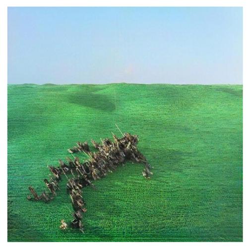 Squid – Bright Green Field.   (2 × Vinyl, LP, Album, Limited Edition, Green)