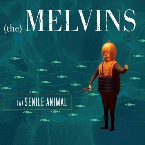 Melvins - (A) Senile Animal (Vinyl, LP, Album, Limited Edition, Sea Blue)