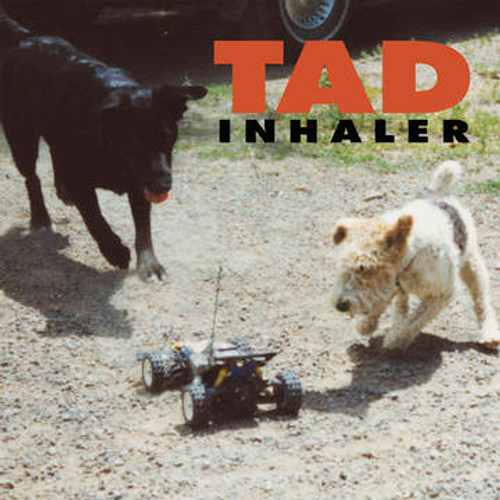 RSD2021 TAD - Inhaler (Vinyl, LP, Album, Limited Edition, Tan/Black/Red Swirl)