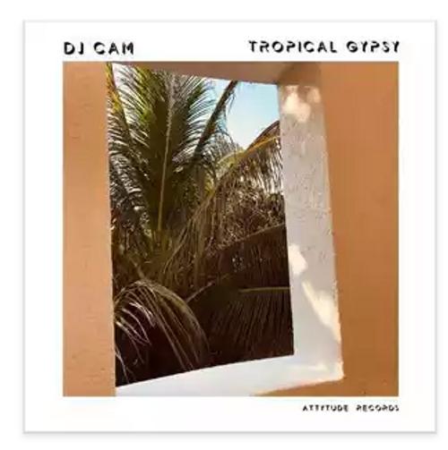 RSD2021 DJ Cam – Tropical Gypsy.   (Vinyl, LP, Album, Orange)