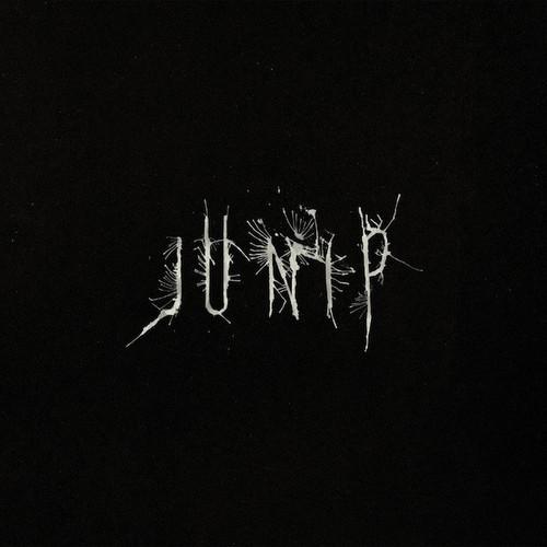 Junip - Junip (Vinyl, LP, Album, Gatefold, 180g)