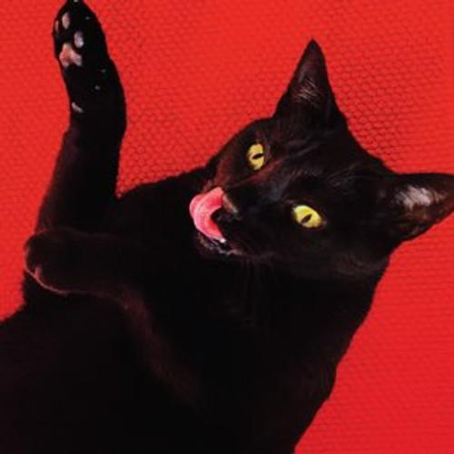Ryan Adams - Big Colors (Vinyl, LP, Album, Limited Edition, Transparent Yellow)