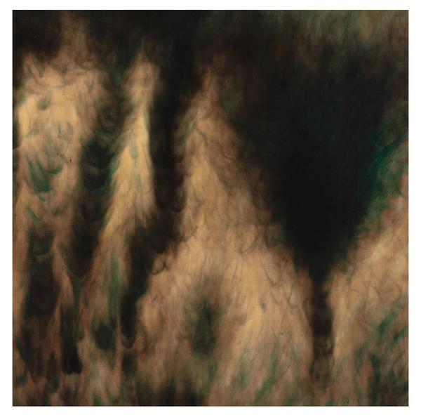 William Basinski – Lamentations.   (2 × Vinyl, LP, Album, Limited Edition, Stereo, Merlot)