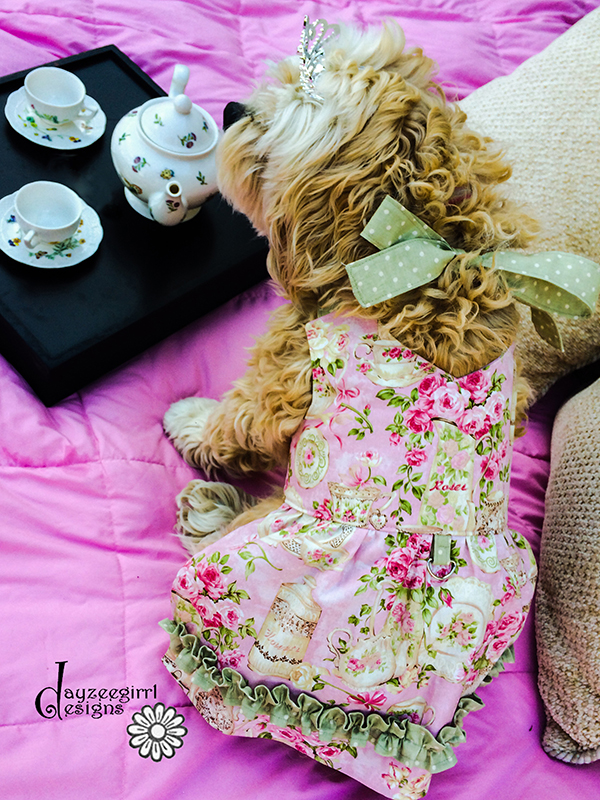 Anna's Sweetheart Halter Dress for Small Breed Dogs PDF Pattern