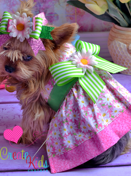 Hadleys Halter Dress for Small Breed Dogs PDF Pattern