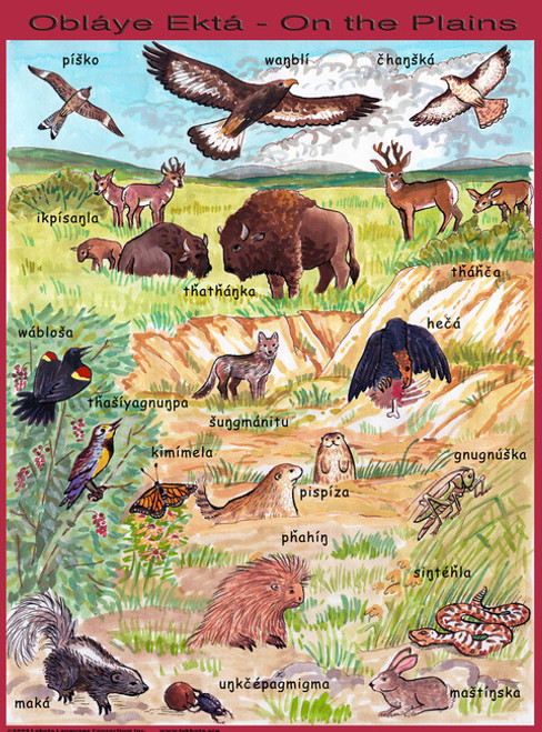 Plains Animals Poster
