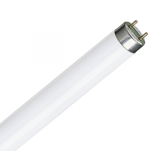 F15T8 15 Watt T8 Fluorescent Lamp
