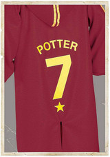 Robe de Harry Potter Quidditch back