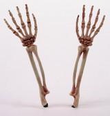 Bras de Squelette Réalistes Sortant du Sol back