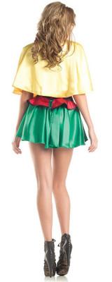 Womens DC Robin Costume back