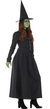 Costume de Sorcière Méchante pour Femme