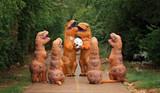 10 Idées De Costumes de Dinosaures
