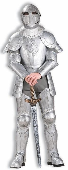 Chevalier En Armure Reluisante