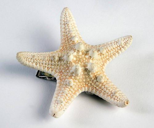 Sirène étoile pince à cheveux