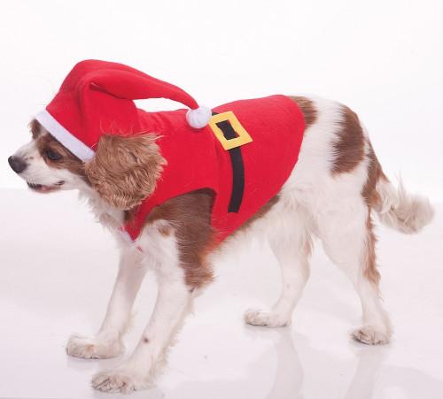 Costume du Père Noël pour Animal