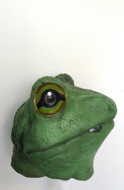 La pleine grenouille tête Masque