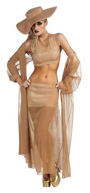Robe des Grammy 2011 de Lady Gaga