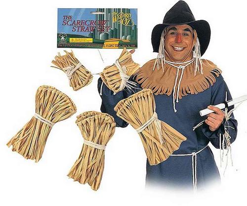 Assistant Oz Scarecrow Straw Kit