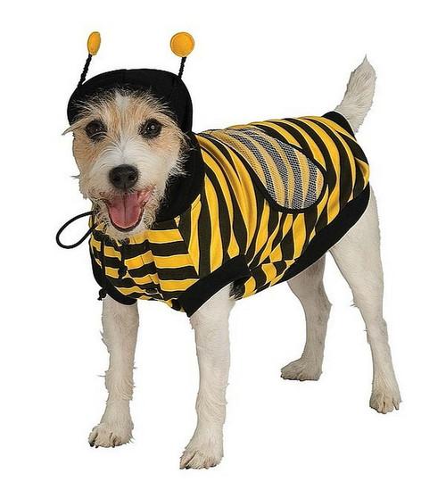 Costume pour Animaux de Bumble Bee
